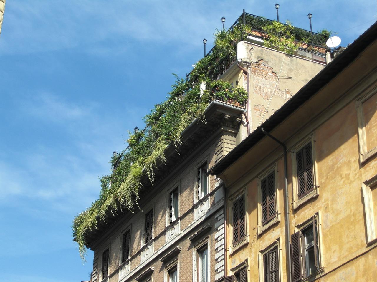 roof-garden-457947_1280